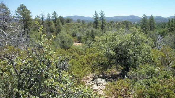 509 N. Chaparral Pines Dr., Payson, AZ 85541 Photo 17