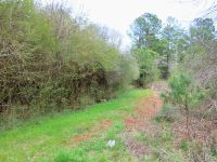 Home for sale: 0 City Of Refuge Rd., Culloden, GA 31016
