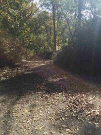 Home for sale: Lot 23 Rustic Oaks, Blue Grass, IA 52726