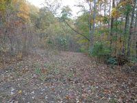 Home for sale: 478 Lacey Fern Ridge, Sylva, NC 28779