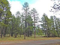 Home for sale: 747 S. Garland Prairie Rd., Williams, AZ 86046