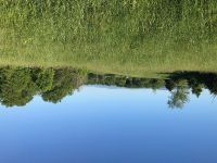 Home for sale: Tbd Cecil Gray Rd., Jonesborough, TN 37659