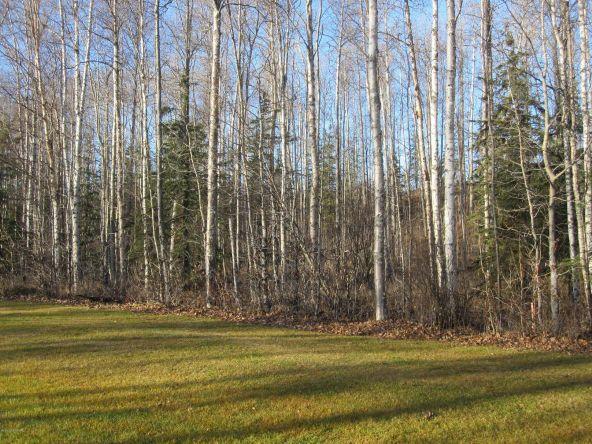 7695 S. Settlers Bay Dr., Wasilla, AK 99623 Photo 1