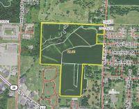 Home for sale: North Brinton Avenue, Dixon, IL 61021