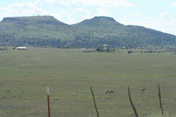1165 S. Table Mountain Rd., Chino Valley, AZ 86323 Photo 32
