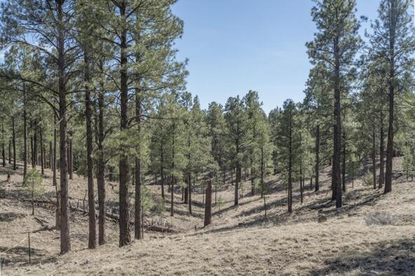 2431 E. del Rae Dr. #181, Flagstaff, AZ 86001 Photo 1