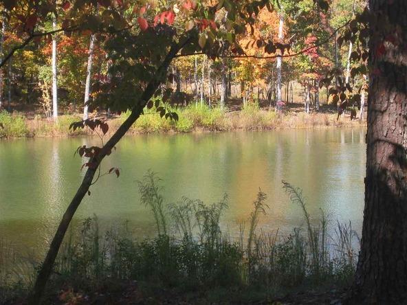 1010 East Grove, Greensboro, GA 30642 Photo 13