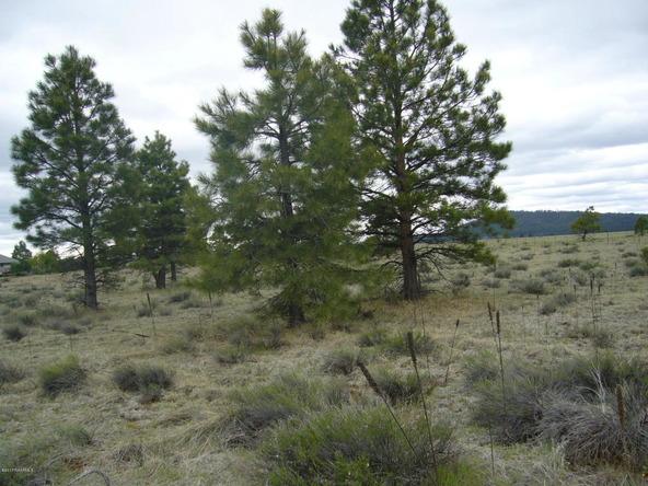 10558 E. White Horse Lake, Parks, AZ 86018 Photo 29