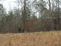 Home for sale: Lot 13 County Rd. 553, Valley, AL 36854