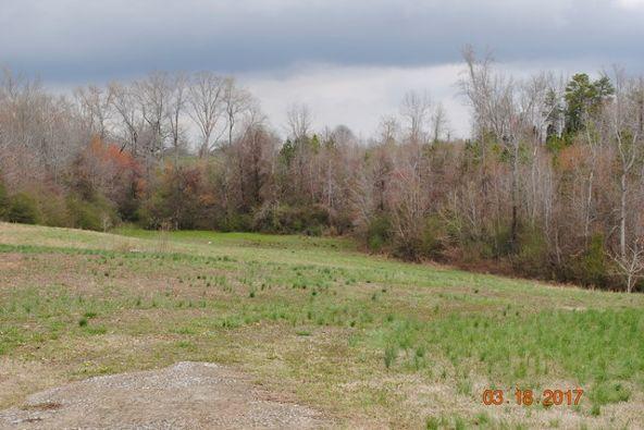 331 Cr 586, Rogersville, AL 35652 Photo 3
