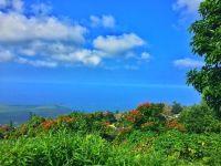 Home for sale: Kalamakumu, Captain Cook, HI 96704