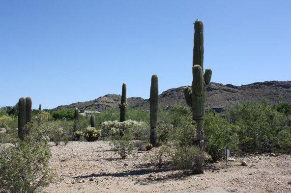 7643 N. Ironwood Dr., Paradise Valley, AZ 85253 Photo 3