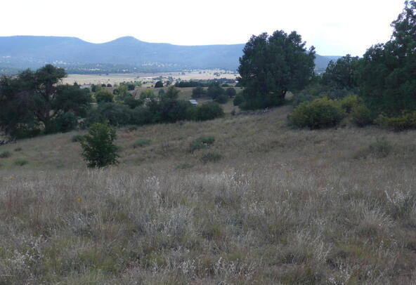 290 N. Navajo Trail, Young, AZ 85554 Photo 10