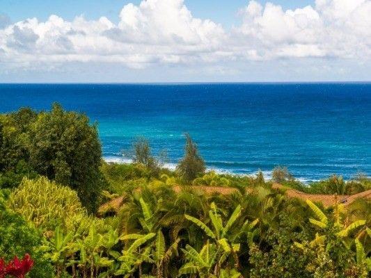 3292-D Kalihiwai Rd., Kilauea, HI 96754 Photo 33