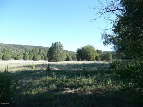200 E. Cline Crossing, Young, AZ 85554 Photo 59
