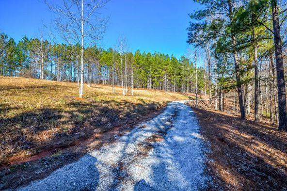 1227 Pine Rd., New Site, AL 36256 Photo 41