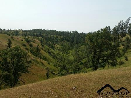 613 Hwy. 36 West, Red Bluff, CA 96080 Photo 21