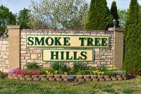 Home for sale: 130 Pickett Ridge, Kirbyville, MO 65679