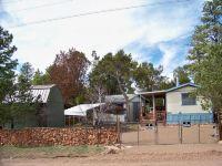 Home for sale: 2060 Grey Squirrel Trl, Overgaard, AZ 85933