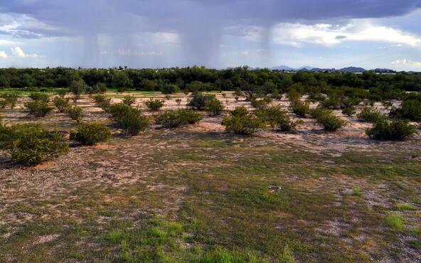 13087 N. Trico, Marana, AZ 85653 Photo 7