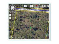 Home for sale: Little Dove Rd., Weeki Wachee, FL 34614