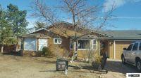Home for sale: 963 Arrowhead Dr., Gardnerville, NV 89460