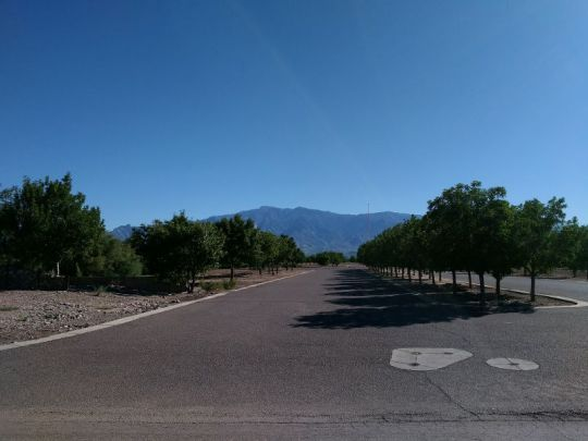 6680 W. Palo Verde Ln., Pima, AZ 85543 Photo 10