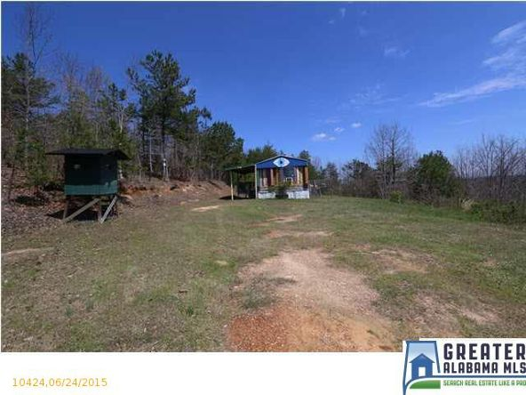 1580 Baker Rd., Ashville, AL 35953 Photo 36