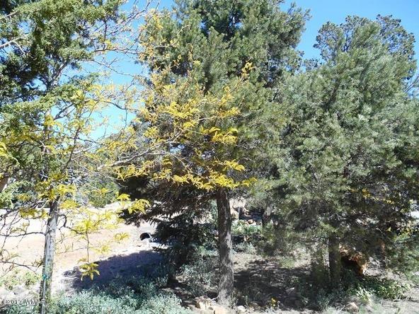 3575 Wildflower Dr., Overgaard, AZ 85933 Photo 7