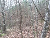 Home for sale: Lot 1&3 Holley Mountain Top Rd., Whittier, NC 28789