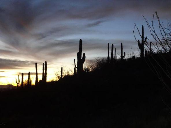 12145 E. Quesada N., Tucson, AZ 85749 Photo 9