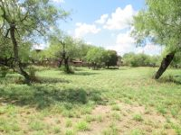 Home for sale: 205 Mesquite Meadows, La Joya, TX 78560
