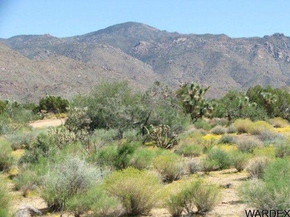 3578-A E. Desert Willow Dr., Yucca, AZ 86438 Photo 8