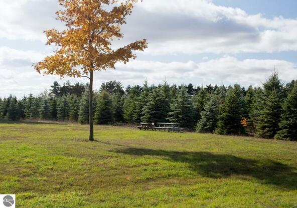 0019 Lipp Farm Rd., Benzonia, MI 49616 Photo 3