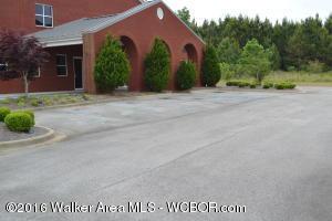1351 Summit Dr., Jasper, AL 35501 Photo 6