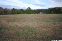 Home for sale: 2704 Blake Dr., Hartselle, AL 35640