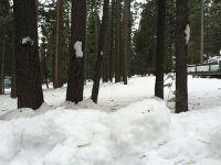 Home for sale: 711 Conifer Trail, Lake Almanor, CA 96137