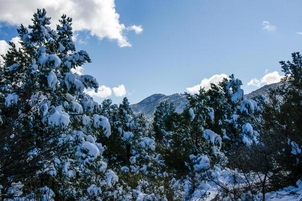 17955 W. Buckhorn Dr., Peeples Valley, AZ 86332 Photo 16