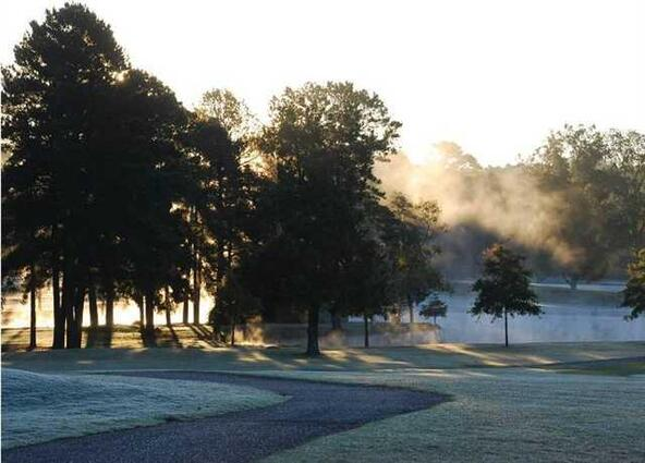 289 Arlington Park Dr., Hot Springs, AR 71901 Photo 1