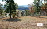 Home for sale: Lt15 Jack Groves Ln., Hayesville, NC 28904