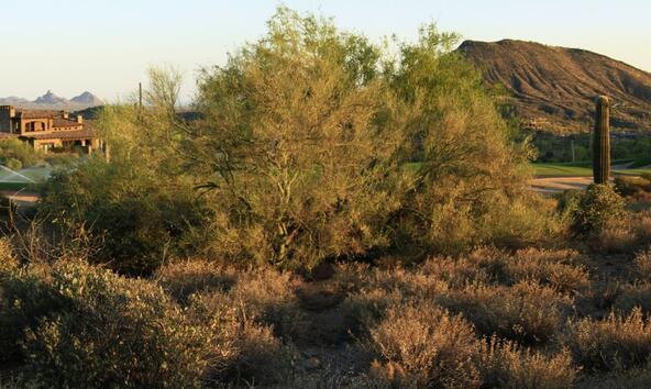 9873 E. Honey Mesquite Dr. 135, Scottsdale, AZ 85262 Photo 4