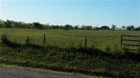 Home for sale: Tbd Fm 272, Celeste, TX 75423