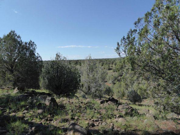 350 No Name, Ash Fork, AZ 86320 Photo 17