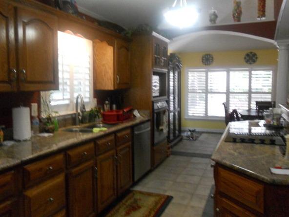 4283 County Rd. 3339, Brundidge, AL 36010 Photo 38