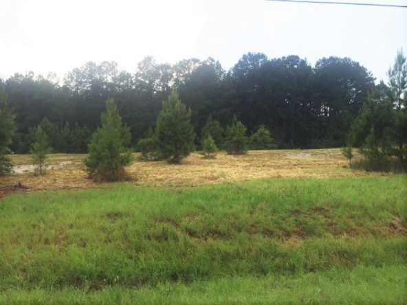 4 Ac Point A Rd. (Cr 59), Andalusia, AL 36421 Photo 2
