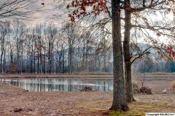 604 Pond View Ln., Huntsville, AL 35741 Photo 24