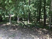 Home for sale: 165 Winterberry Ridge, Fayetteville, GA 30214