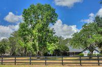 Home for sale: 8280 N.W. 121st, Ocala, FL 34482