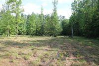 Home for sale: 200 Wheeler St., Whiteville, NC 28472
