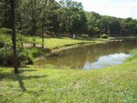 Home for sale: Private Rd. 5598, Quitman, TX 75783